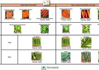 bf1_variety-calendar-carotte-laitue-gombo
