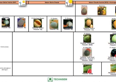 bf1_variety-calendar-melon-pasteque-giraumon